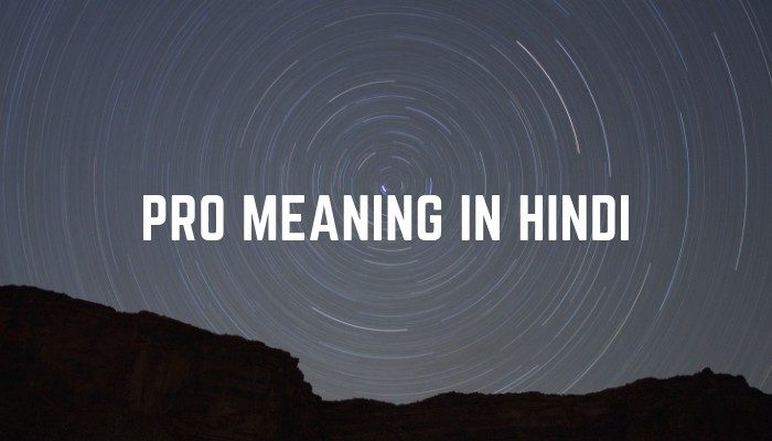 pro-meaning-in-hindi-5889043